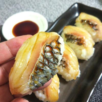 チヌのお寿司