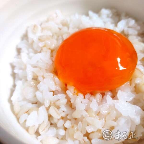 黄身の麺つゆ漬けのせご飯